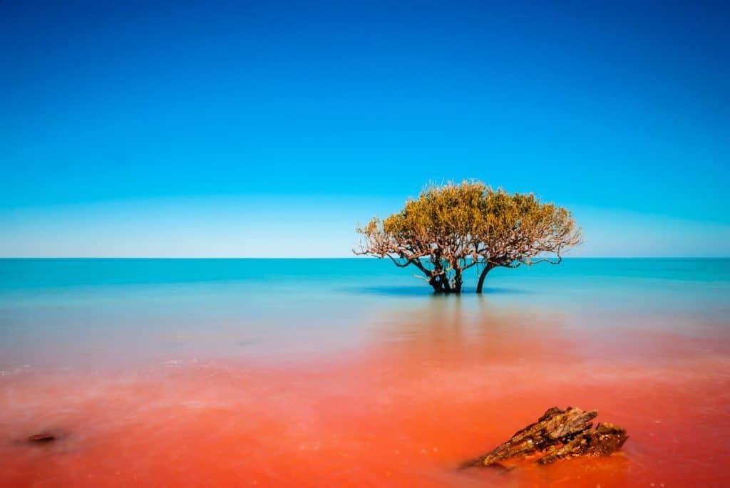 Study in Western Australia